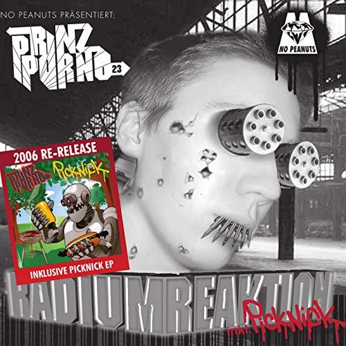 Picknick Im Park (Rap ist Pt. 1) [Explicit]