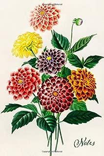 Notes: Dahlia Floral Blank Journal   Pretty Flower Bouquet Notebook   Vintage Retro Style Art