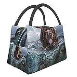 Newfoundland Dog - Bolsa de almuerzo portátil e impermeable, bolsa de aislamiento térmico