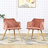 Velvet Chair Set of 2 Pink Accent Chairs Modern Arm Chairs for Living Room