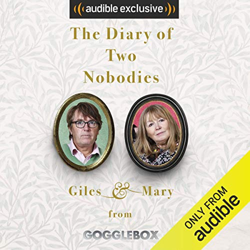 The Diary of Two Nobodies audiobook cover art