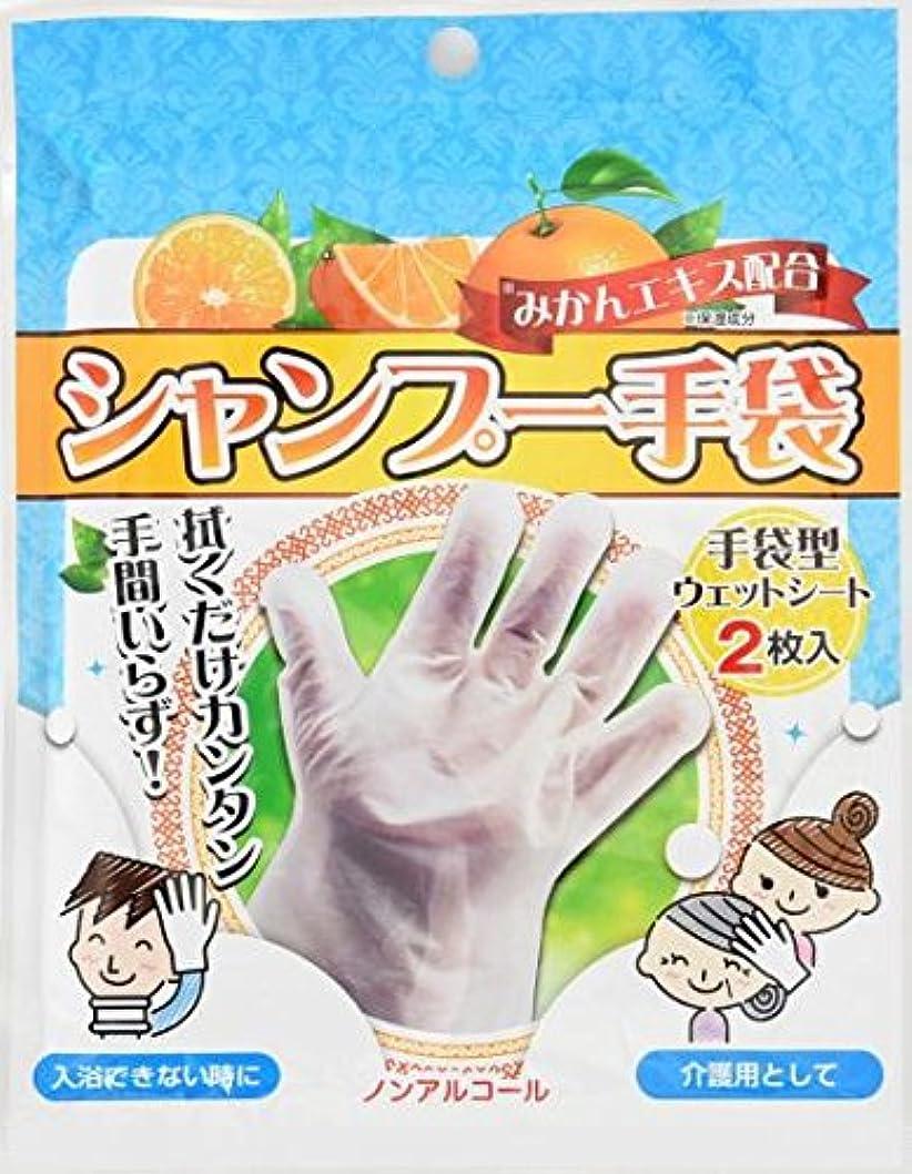 テクニカルリビジョンブラウンシャンプー手袋 2枚入×80袋セット (合計160枚)