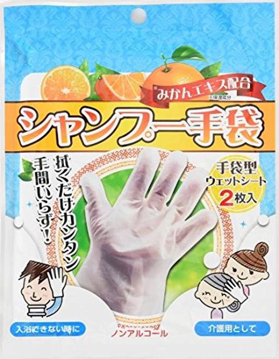 農夫貫通する優先シャンプー手袋 2枚入×80袋セット (合計160枚)