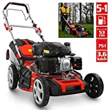 HECHT 5-IN-1 Benzin Rasenmäher – leistungsstarker 4 Takt Eco Motor 4,4 kW (6,0 PS) – Seilzug...
