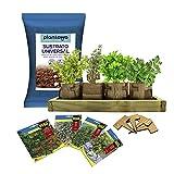 PLANTAWA Kit de Cultivo Growbag, Kit Completo para Cultivar Hierbas Aromáticas y Culinarias, Semillas Huerto Urbano para Casa Jardín Decoración Plantas Ecológicas Interior y Exterior
