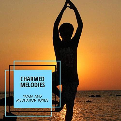 Yogsutra Relaxation Co, Liquid Ambiance, Loner Wolf, Mystical Guide, Serenity Calls, Ambient 11, Pause & Play, Sanct Devotional Club, Spiritual Sound Clubb, Universal Silence, Moist Soul, ArAv NATHA & AlFa RaYn