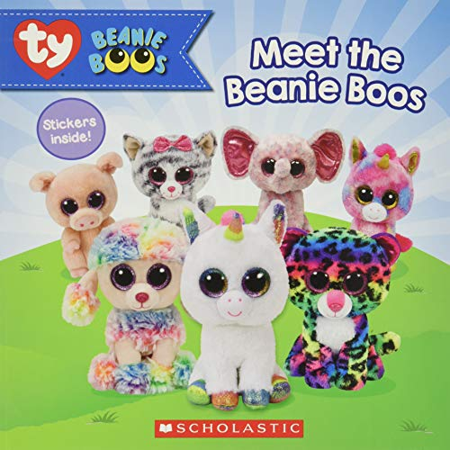 Meet the Beanie Boos (Beanie Boos)