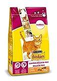 Purina Friskies Control Bolas de Pelo Pienso para Gato Adulto Pollo y Verduras 6 x 1,5 Kg