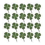Healifty - 24 unidades secas de trébol de cuatro hojas naturales reales, prensadas, flores secas, trébol, plantas para bricolaje, resina, joyas, manualidades, teléfono, bolsa autoadhesiva (verde)