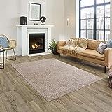 FABRIQ Florida Alfombra de pelo corto suave para salón, comedor y dormitorio, fácil de limpiar, antideslizante, resistente, 115 x 170 cm, color marrón