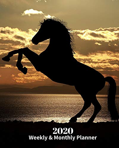 2020 Weekly and Monthly Planner: Horse Shadow - Monthly Calendar with U.S./UK/ Canadian/Christian/Jewish/Muslim Holidays– Calendar in Review/Notes 8 x 10 in.- Horse Animal Nature