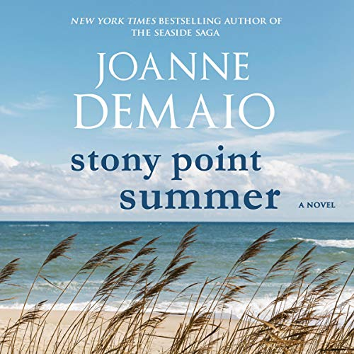 Stony Point Summer  By  cover art