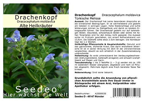 Seedeo® Drachenkopf (Dracocephalum moldavica) 200 Samen