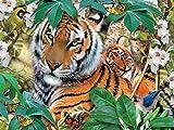 Harmony - Tigers Jigsaw Puzzle, 550 Pieces