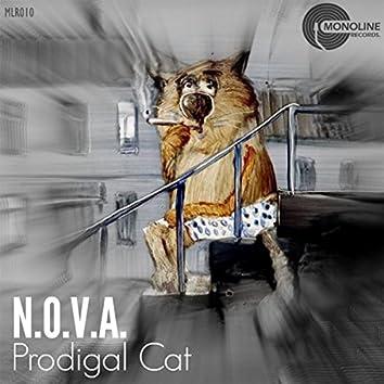 Prodigal Cat