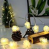 WANGXB Luces Cuerda de Hadas,con Control Remoto,LED con Bombillas Iluminacion para Uso Interiores Exteriores en Casa Jardín Patio/Color cálido