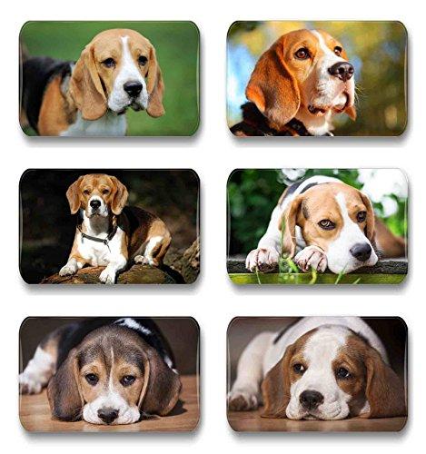 Merchandise for Fans Beagle - 6 rechteckige Kühlschrankmagnete 7X 4,5 cm - 01 für Memoboard Pinnwand Magnettafel Whiteboard