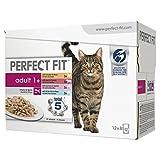 Perfect Fit 363332 nourriture pour chat, Pack de 4,12 unités (48 x 85 g)