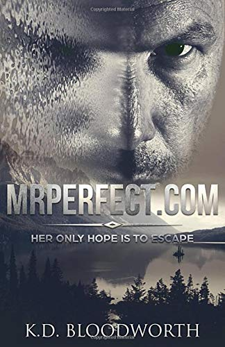 Book: MrPerfect.com by K.D. Bloodworth