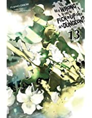 IS WRONG PICK UP GIRLS DUNGEON NOVEL 13