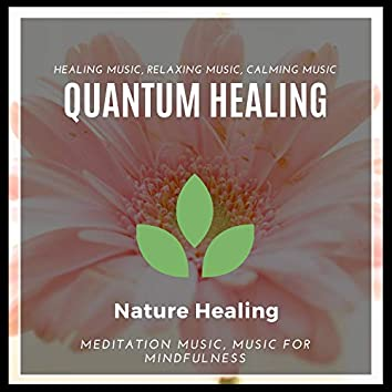 Quantum Healing (Healing Music, Relaxing Music, Calming Music, Meditation Music, Music For Mindfulness)