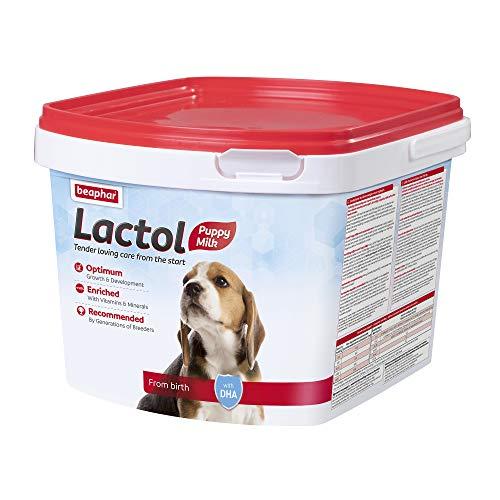 Beaphar - LACTOL - Lait maternisé pour chiot en poudre - Enrichi en DHA - Source de protéines de haute qualité - Pour chiot non sevré, femelle gestante ou allaitante et chien âgé ou malade - 2 kg