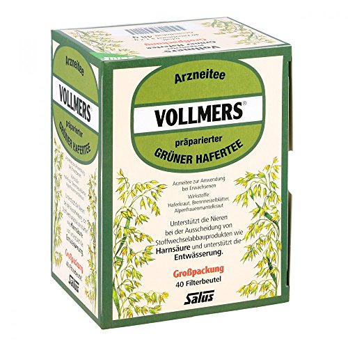 VOLLMERS präparierter grüner Hafertee Filterbeutel 40 St