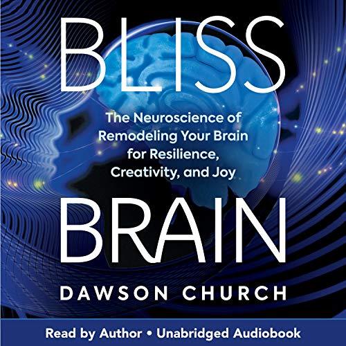 Bliss Brain Titelbild