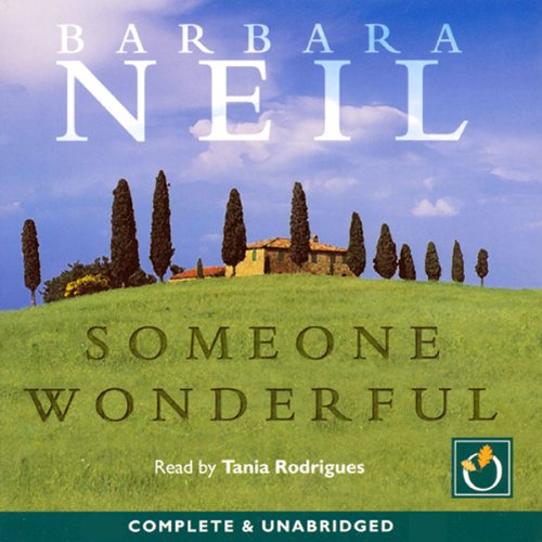 Someone Wonderful audiobook cover art