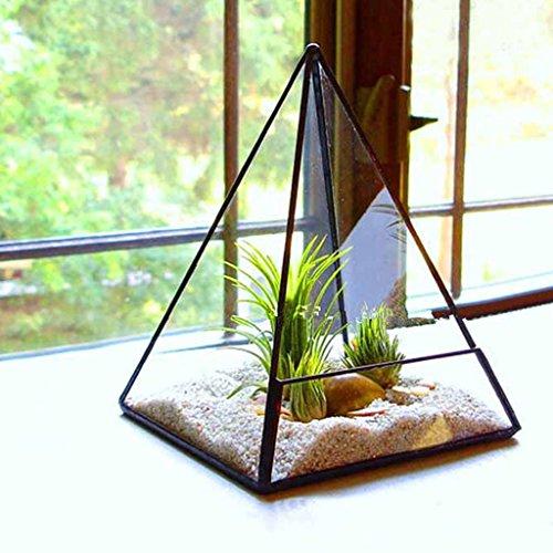 Terrario De Cristal Hada Musgo Miniatura Invernadero Jardín - Forma De La Pirámide