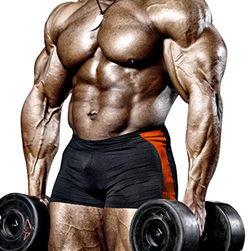 palglg Herren Bodybuilding Posing Trunks Spandex und Lycra Shorts -  Schwarz -  X-Large :Taille 35.4''/ 41.3''