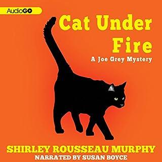Cat Under Fire audiobook cover art