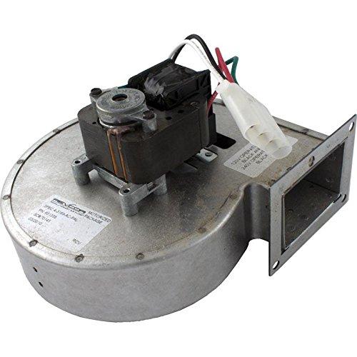 Raypack 008080F Ventilador soplador asistido bajo Nox