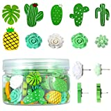 60 Pieces Decorative Push Pins Set, Includes Cute Cactus Green Rose Pineapple Pushpin for Fixing Photos, Pictures, Maps, Assorted Thumbtacks for Bulletin Board, Cork Board and Wall, 10 Styles