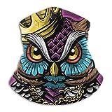 DFGHG Owl King con corona, calentador de cuello de microfibra, polaina de cuello multifunción, máscara facial Unisex para motociclista, deportes al aire libre