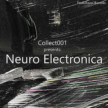 Neuro Electronica