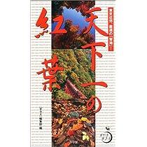 天下一の紅葉―東京近郊、厳選の「聖地」! (ポケットサライ)