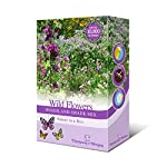 Woodland Garden Wildflower Seeds for Bees and Butterflies | Wild Flower Seed Mix Grow Your Own Foxgloves, Borage and Forget Me Nots - Suitable for Shady Areas 1 x 15g Mixed Pack by Thompson & Morgan