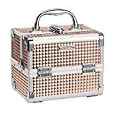 Frenessa Makeup Train Case Portable Cosmetic Box Jewelry Organizer 2-Tier Trays Lockable with Keys...