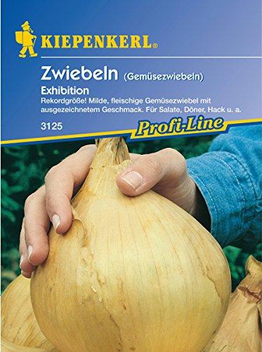 Sperli Gemüsesamen Gemüsezwiebel Exhibition, grün