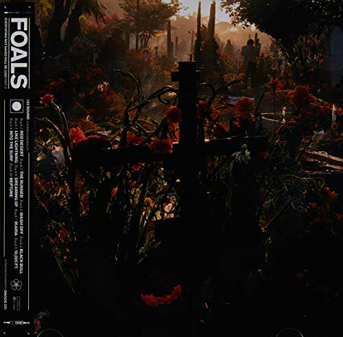 FOALS - EVERYTHING - NOT SAVED WILL BE LOST