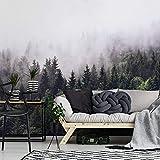 Fototapete Nebliger Wald Vlies Tapete Natur Nebel Bäume Fotografie Wandbild Wanddeko ohne Zubehör Wall Art - 240x260 cm