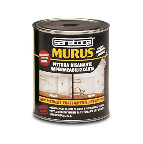SARATOGA - Pittura impermeabilizzante Murus, 88874001,1 Llitro - Pittura imp. e risanante