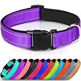 Joytale Reflective Dog Collar,Soft Neoprene Padded Breathable Nylon Pet Collar Adjustable for Puppy and Small Dogs,Purple,XS