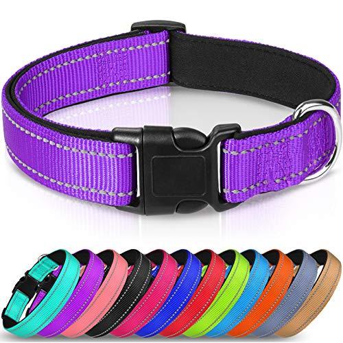 Joytale Collar Perro Reflectante,Nylon Collar Acolchado con Neopreno,Ajustable para Perros Grande,40-60cm,Morado