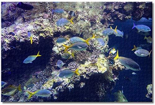 43LenaJon Monaco Museum Aquarium Monte Carlo Puzzles für Erwachsene Kinder 1000 Teile Holzpuzzle Spiel für Geschenke Heimdekoration besondere Reise-Souvenirs