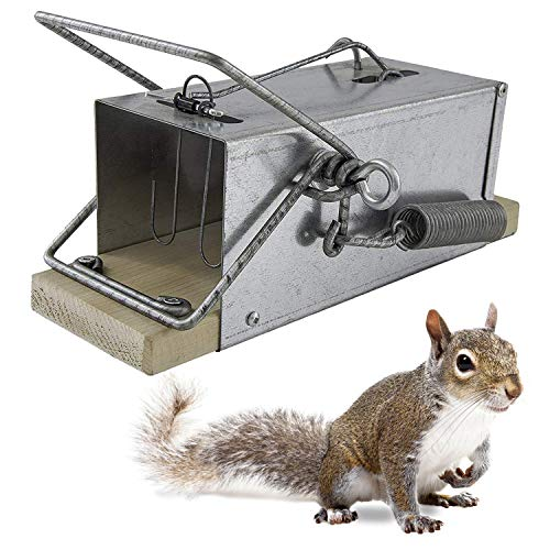 Squirrel Traps Outdoor - Squirrel Traps - Ouell Traps - Trap for Squirrels (Big)
