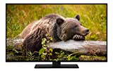 JVC LT-40V45LFC 102 cm / 40 Zoll Fernseher (Full HD, Triple-Tuner)