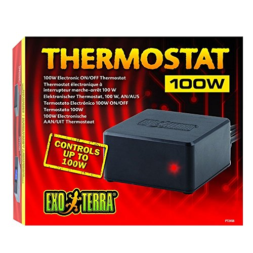Exo Terra PT2456 Thermostat 100 W, schwarz