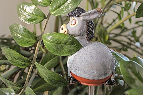 Realizzato a mano da giardino in ceramica decorazione 'asinello,  Midene